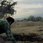 A lo Iñárritu en el videoclip de 'The Bad In Each Other' (Feist)