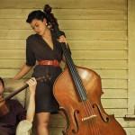 Cicada Rhythm: el rústico folk / blues destilado desde Athens
