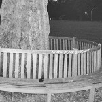 [Recomendación] Archy Marshall – A New Place 2 Drown