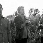 METZ abruman de nuevo con el explosivo single 'Cellophane'