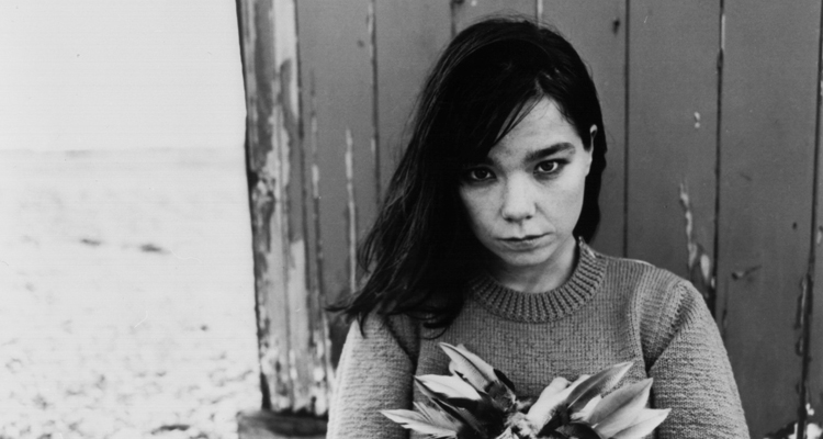 bjork documental vespertine