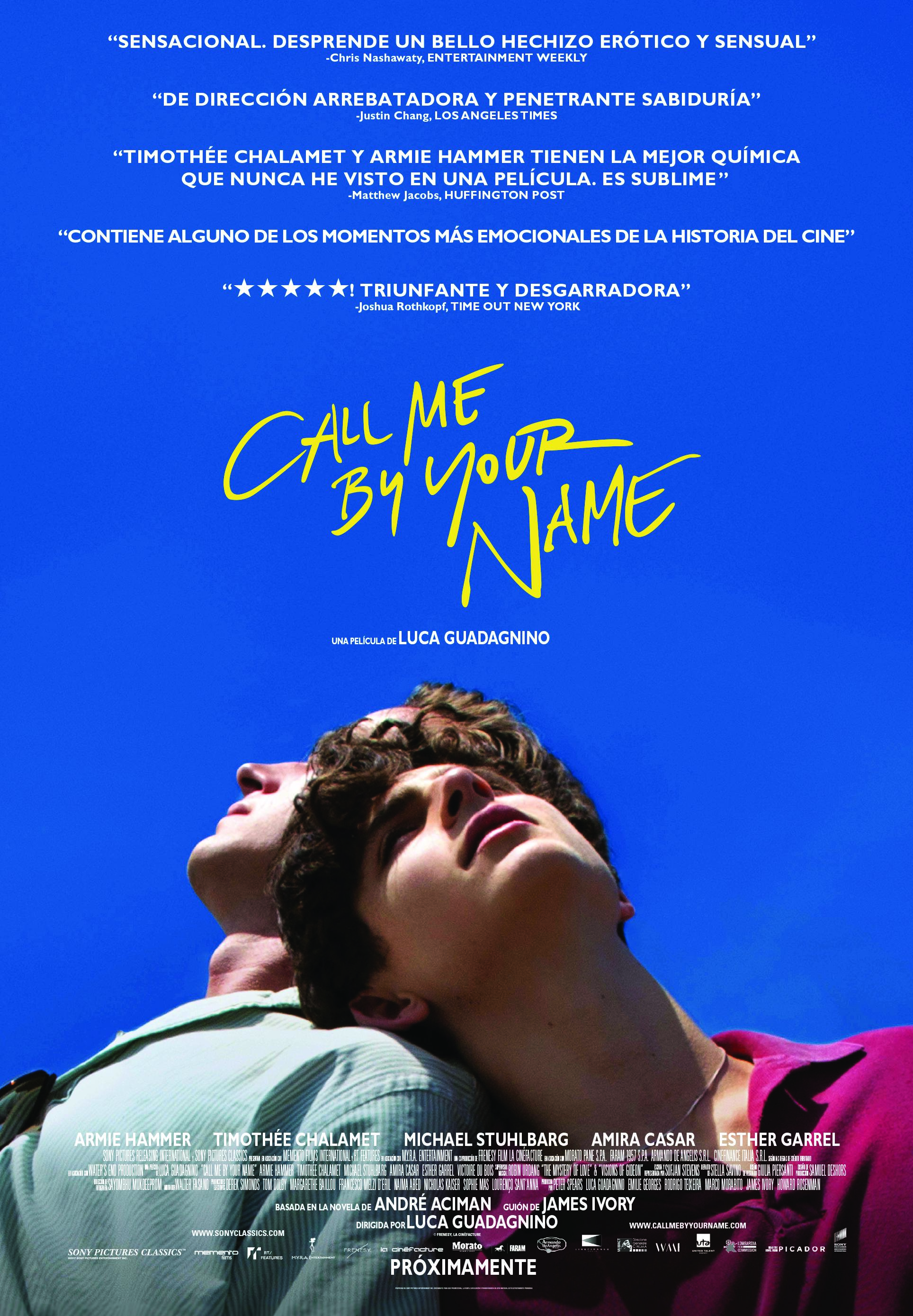 call me by your name poster bso
