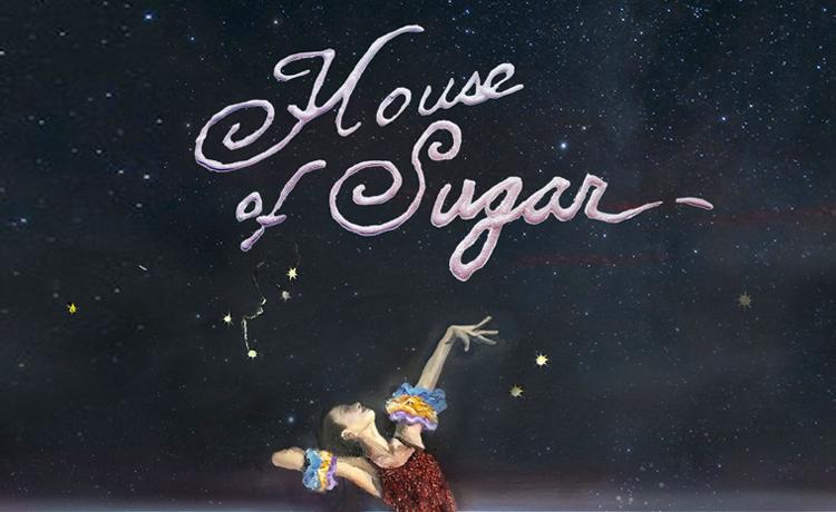 (Sandy) Alex G House Of Sugar