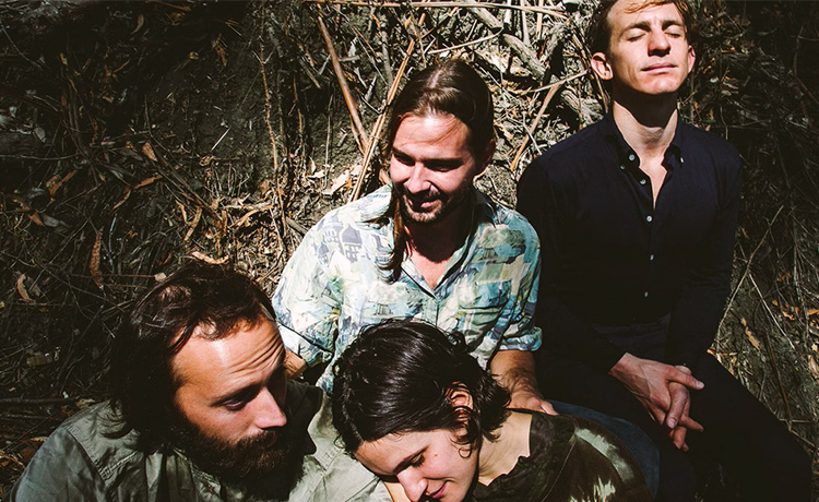 big thief not in love