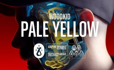 woodkid pale yellow