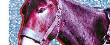 protomartyr ultimate success today