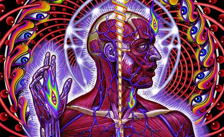 tool lateralus madison square garden